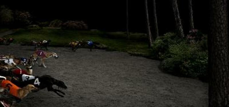 Hunting ghosts av Lovisa Ringborg