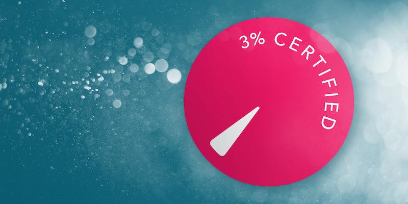 Bild: The 3% Movement