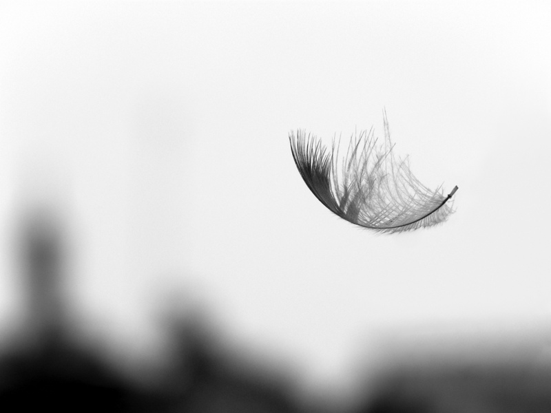 Bild: Partha S. Sahana/Flickr Creative Commons