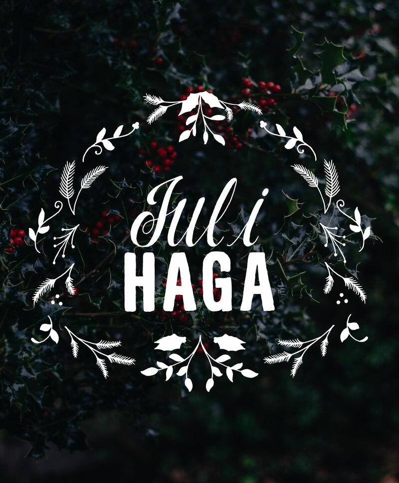 Bokningen för Jul i Haga är nu öppen!